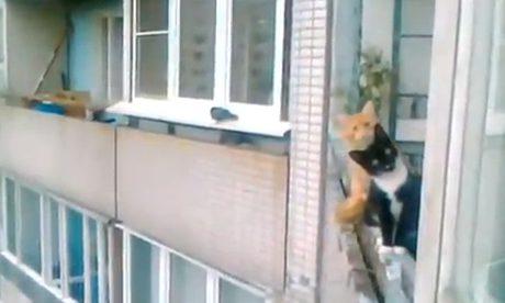 Mis vecinos están todo el día mirándome