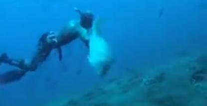 El pez grande siempre se come al pez pequeño