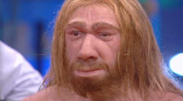 Reconstruyen la cara del hombre de Neandertal y sale Chuck Norris
