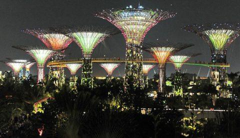 arboles navidad singapur