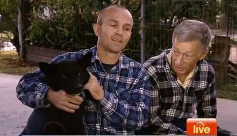 Un anciano camina 300 kilómetros para encontrar a su perro perdido