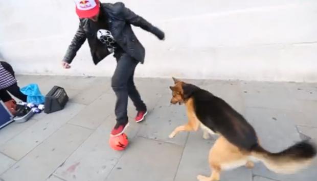 Séan Garnier (campeón del mundo de fútbol freestyle) vs. perro
