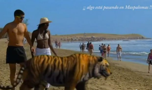 Así se promociona el Carnaval 2014 de Gran Canaria...