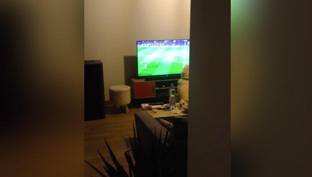 Entra en el salón y se encuentra a su perro viendo el fútbol totalmente atento a cada jugada