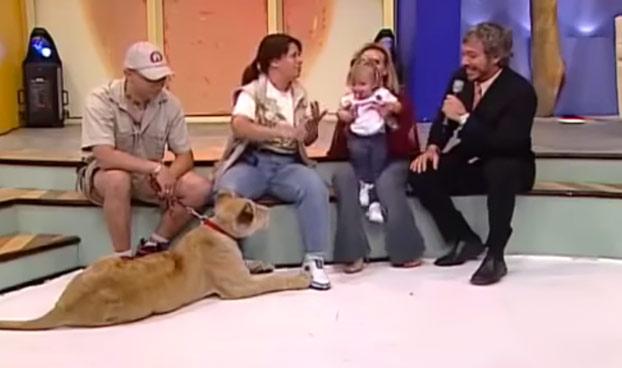 Una leona ataca a una niña durante un programa en directo (Vídeo)