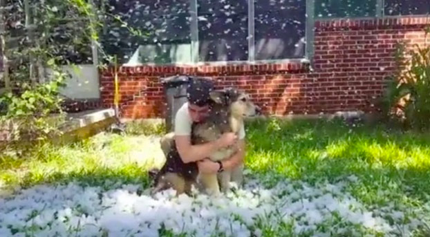 Una joven provoca una 'nevada' en el jardín de su casa para que su perro pueda jugar antes de ser sacrificado