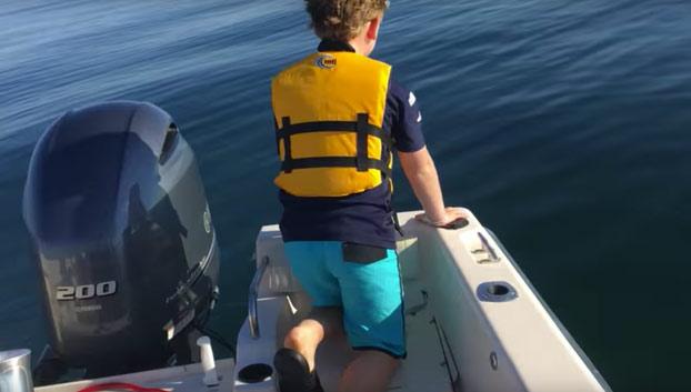 Un padre y su hijo graban como un tiburón blanco de 6 metros empieza a dar vueltas alrededor de su barco