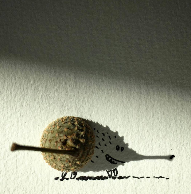 ilustraciones-sombras-objetos-10