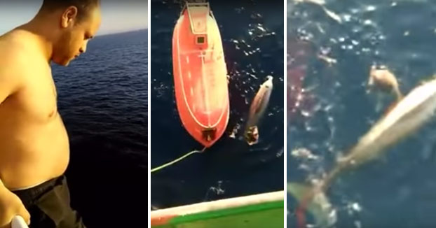 Un marinero salta de la cubierta de un petrolero para salvar a una ballena enredada