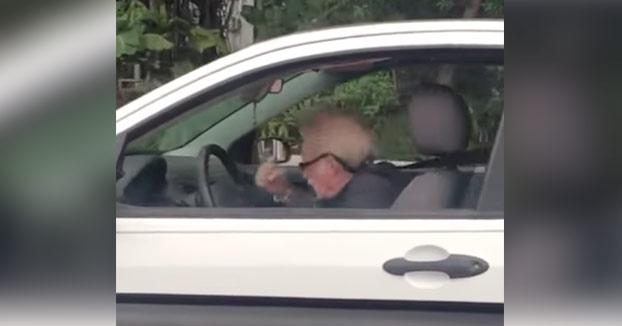 Abuelo dándolo todo en el coche al ritmo de Metallica