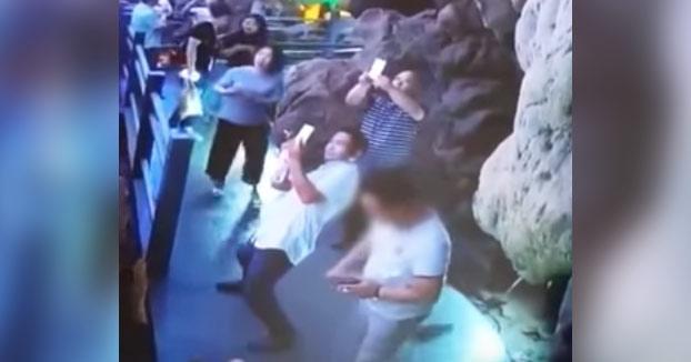 Un turista arranca de varias patadas una estalagmita de decenas de millones de años