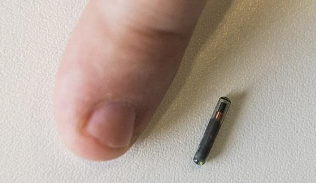 empresa wisconsin pondra microchips trabajadores