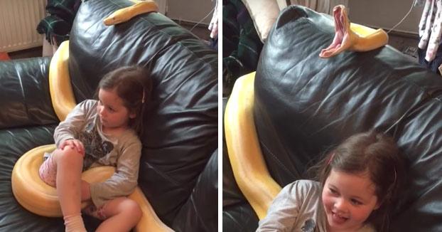Lo típico... Una niña viendo la tele con una pitón reticulada de 3,5 metros