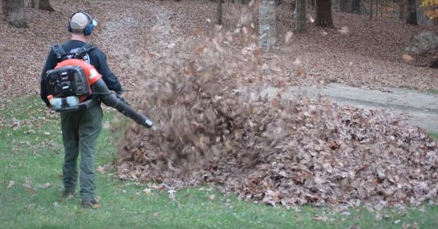Futuros pranksters: La broma de estos niños a su padre mientras recoge hojas secas del jardín