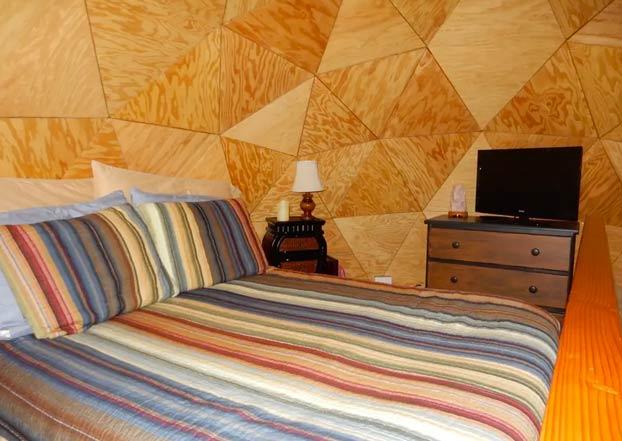 ''La Cúpula de Hongos'', una casita de madera, el alojamiento más visitado de Airbnb durante años